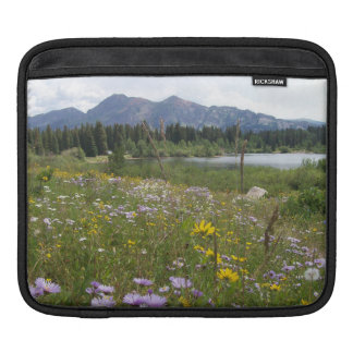 Fresh Air Outdoors iPad Sleeves