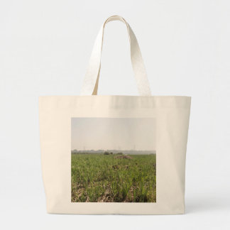 Fresh and dried grass in Okhla Bird Sanctuary Tote Bag