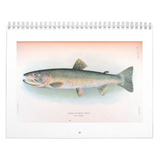 Fresh and Saltwater Fish Calendar