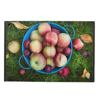 Fresh apples harvest iPad air case