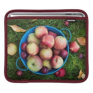 Fresh apples harvest sleeve for iPads