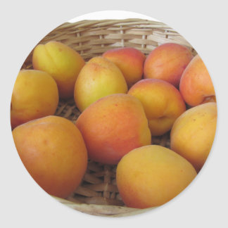 Fresh apricots in a wicker basket on white classic round sticker