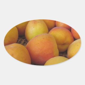 Fresh apricots in a wicker basket on white oval sticker