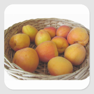 Fresh apricots in a wicker basket on white square sticker
