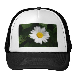 Fresh as a Daisy Trucker Hat