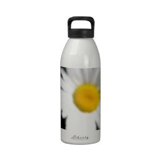 Fresh as a Daisy Water Bottle