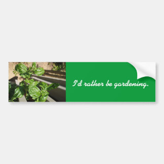 Fresh basil leaves bumper stickers