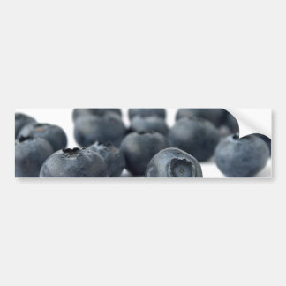 Fresh Blueberries Bumper Sticker