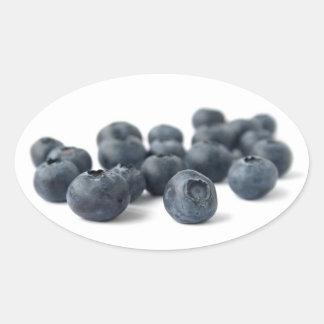 Fresh Blueberries Oval Sticker
