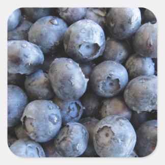 Fresh Blueberries Photograph Square Sticker