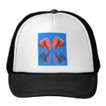 Fresh Boxing Glove coloring Blue Hats