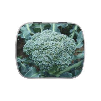 Fresh Broccoli Flower on Stalk Candy Tin