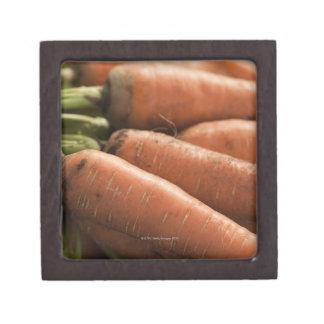 Fresh Carrots at the Union Square Greenmarket Premium Jewelry Boxes