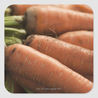 Fresh Carrots at the Union Square Greenmarket Square Sticker