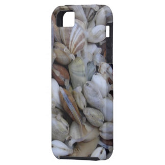 Fresh Clams Case-Mate Vibe iPhone 5 Case
