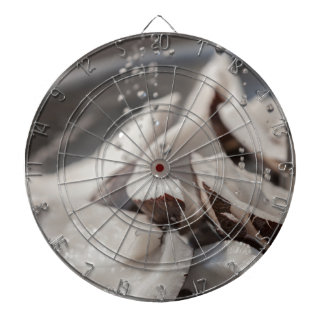 fresh coconut in the street dartboard with darts