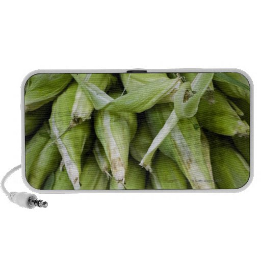 Fresh corn in market mini speakers