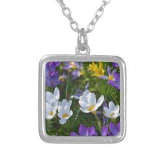 Fresh crocuses of different colors silver plated necklace