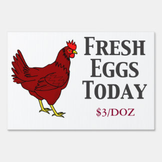 Fresh Eggs Today or Tomorrow Lawn Sign