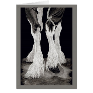 """Fresh Feathers"" - Shire Draft Horse Card"
