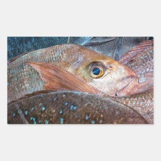 Fresh fish on a market rectangular sticker