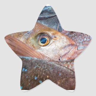 Fresh fish on a market star sticker