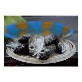 Fresh fish on fish market Mercado de Peixe), Poster