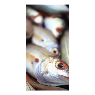 Fresh fish photo card