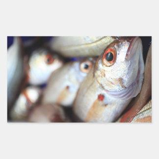 Fresh fish rectangular sticker