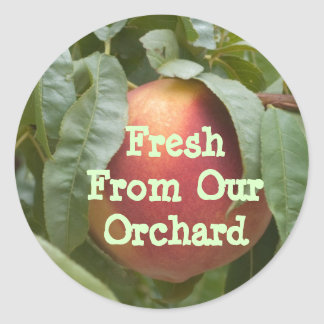 Fresh From Our Orchard Template Classic Round Sticker