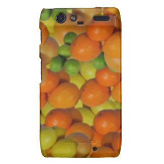 fresh fruit motorola droid RAZR case
