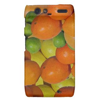 fresh fruit droid RAZR cases