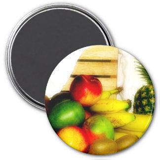 Fresh Fruit Still Life 3 Round Magnet Fridge Magnets