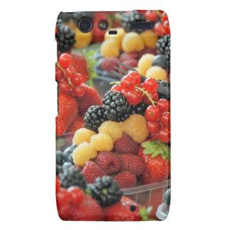fresh fruits droid RAZR case