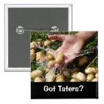 Fresh Garden Potatoes Getting Washed Pin