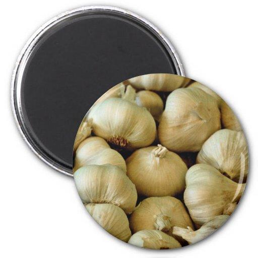 Fresh garlic Photo 2 Inch Round Magnet