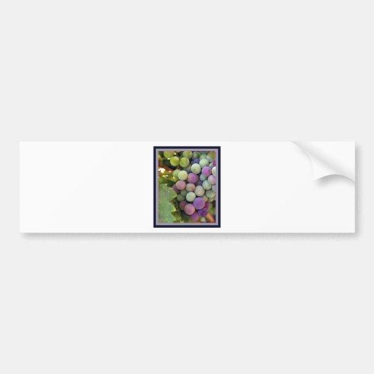 Fresh Grapes and Wine Bumper Sticker