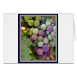 Fresh Grapes and Wine Cards