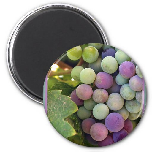 Fresh Grapes and Wine Magnets