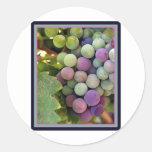 Fresh Grapes and Wine Round Sticker