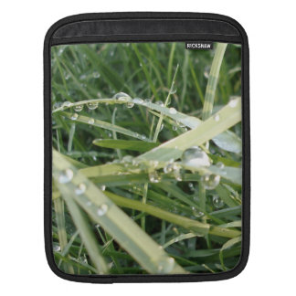 Fresh Grass - Photo of Spring iPad Sleeve