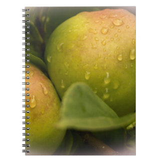 Fresh Green Apples with Raindrops Notebook