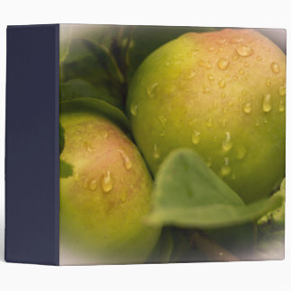 Fresh Green Apples with Water Droplets Binder