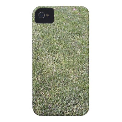 Fresh Green Grass Background Blackberry Bold Case