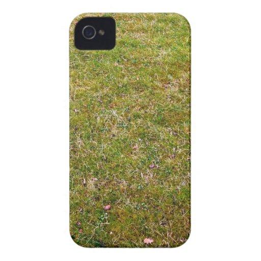 Fresh Green Grass Background Blackberry Cases