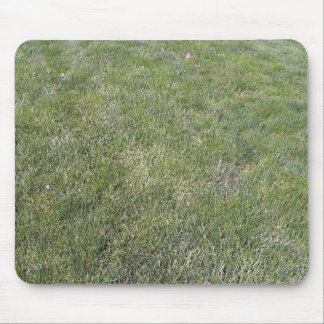 Fresh Green Grass Background Mouse Pad