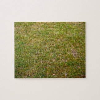 Fresh Green Grass Background Puzzles