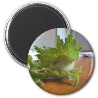 Fresh green hazelnuts on a wooden table magnet