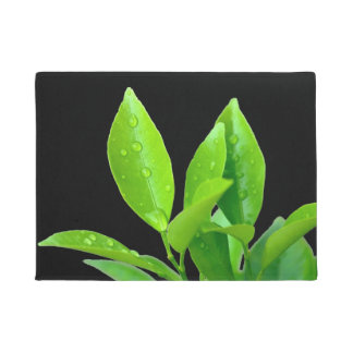 Fresh Green Leaves with Waterdrops on Black Doormat