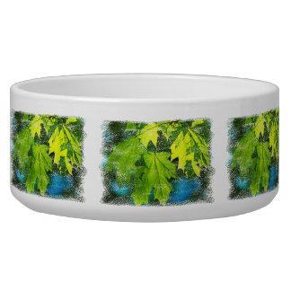 Fresh green maple leaves bowl